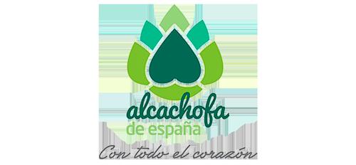 alcachofa-de-espana